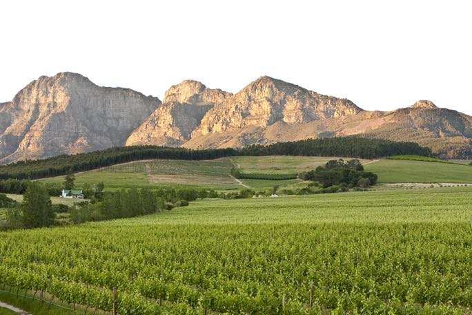 Noble Hill wine estate and the Simonsberg mountains